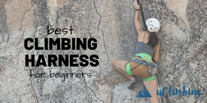 Best Climbing Harness For Beginners