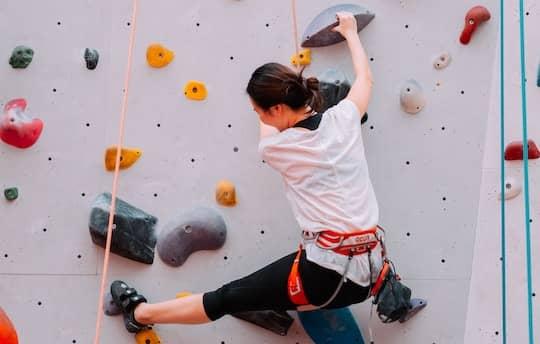 Climbing Harness Indoor